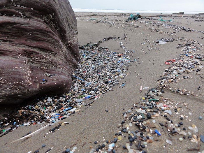 https://static.boredpanda.com/blog/wp-content/uploads/2017/07/plastic-washed-ashore-tregantle-beach-trash-rob-arnold-28-595a416b9a049__700.jpg