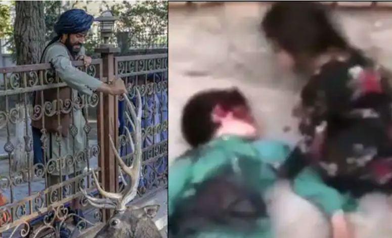 Video: तालिबान ने मासूम को दी दर्दनाक मौत, बच्चे के पिता पर था विरोधियों का साथ देने का शक