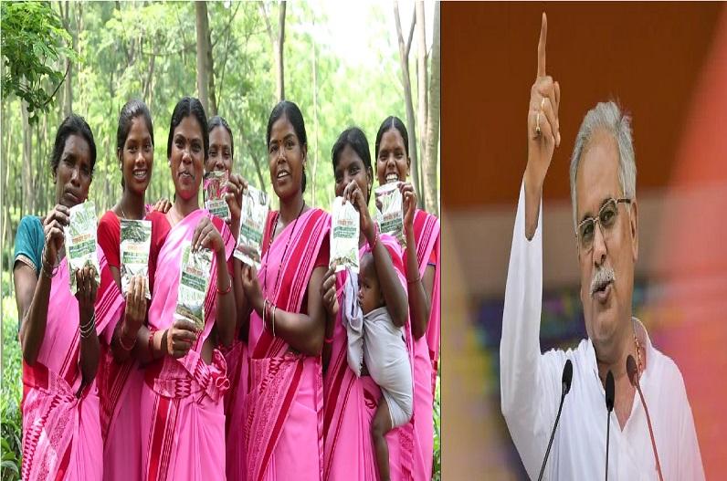 चाय और कॉफी की खेती को बढ़ावा देने मुख्यमंत्री भूपेश बघेल का बड़ा कदम, टी कॉफी बोर्ड के गठन का लिया निर्णय