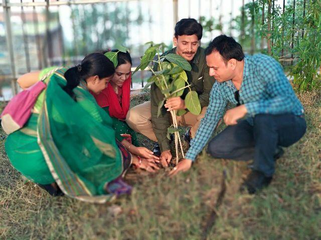 पर्यावरण दिवस पर शिक्षाकर्मियों ने लगाया 'संविलियन वट वृक्ष', अपने स्कूल और गांवों में भी लगाएंगे