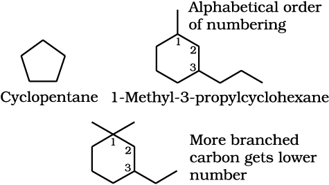 NCERT PDF - Organic Chemistry - Some Basic Principles And Techniques