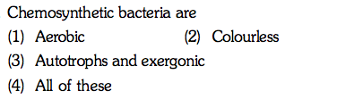 Chemosynthetic bacteria are (1) Aerobic (3) Autotrophs and exergonic (4) All of these (2) Colourless