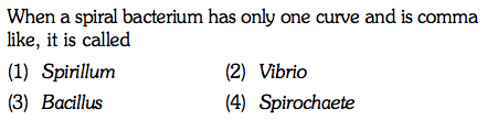When a spiral bacterium has only one curve and is comma like, it is called (1) Spirillum (3) Bacillus (2) Vibrio (4) Spirochaete