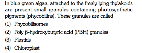 In blue green algae, attached to the freely lying thylakoids are present small granules containing photosynthetic pigments (phycobilins). These granules are called (1) Phycobilisomes (2) Poly β-hydroxybutyric acid (PBH) granules (3) Plastids 4) Chloroplast