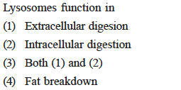 mes function in Lvsoso (1) Extracellular digesion (2) Intracellular digestion (3) Both (1) and (2) (4) Fat breakdown