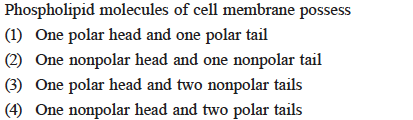 Phospholipid molecules of cell m (1) One polar head and one polar tail (2) One nonpolar head and one nonpolar tail (3) One polar head and two nonpolar tails (4) One nonpolar head and two polar tails e possess