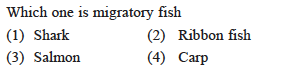 Which one is migratory fish (1) Shark (3) Salmon (2) Ribbon fish (4) Carp