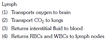 (1) Transports oxygen to brain 2) Transport CO2 to lungs (3) Returns interstitial fluid to blood an
