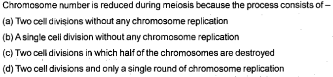 Chromosome number is reduced during meiosis because the process consists of- (a) Two cell divisions without any chromosome replication (b) A single cell division without any chromosome replication (c) Two cell divisions in which half of the chromosomes are destroyed (d) Two cell divisions and only a single round of chromosome replication