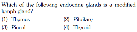 Which of the following endocrine glands is a modified lymph gland? (1) Thymus (3) Pineal (2) Pituitary (4) Thyroid