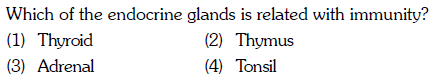 Which of the endocrine glands is related with immunity? (1) Thyroid (3) Adrenal (2) Thymus (4) Tonsil