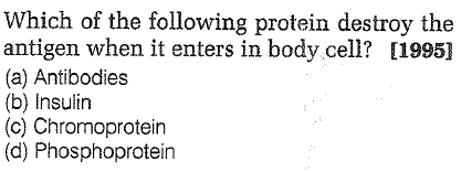 Which of the following protein destroy the antigen when it enters in body cell? [1995] (a) Antibodies (b) Insulin (c) Chromoprotein (d) Phosphoprotein
