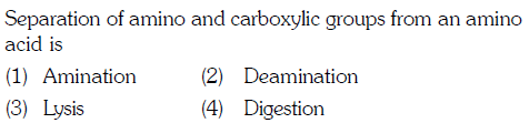 Separation of amino and carboxylic groups from an amino acid is (1) Amination (3) Lysis 2) Deamination (4) Digestion