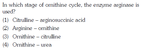 In which stage of ornithine cycle, the enzyme arginase is used? (1) Citrulline arginosuccinic acid 2) Arginine - ornithine (3) Ornithine - citrulline (4) Ornithine - urea