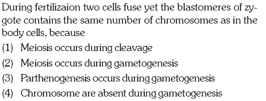 During fertilizaion two cells fuse yet the blastomeres of zy- gote contains the same number of chromosomes as in the body cells, because (1) Meiosis occurs during cleavage (2) Meiosis occurs during gametogenesis (3) Parthenogenesis occurs during gametogenesis (4) Chromosome are absent during gametogenesis