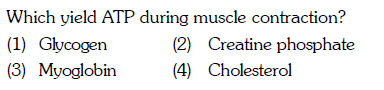 Which yield ATP during muscle contraction? (1) Glycogen (3) Myoglobin 4) Cholesterol (2) Creatine phosphate