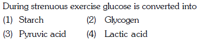 During (1) Starch (3) Pyruvic acid strenuous exercise glucose is converted into (2) Glycogen (4) Lactic acid