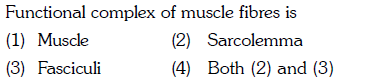 Functional complex of muscle fibres is (1) Muscle (3) Fasciculi (2) Sarcolemma (4) Both (2) and (3)