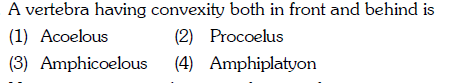 A vertebra having convexity both in front and behind is (1) Acoelous (3) Amphicoelous (4) Amphiplatyon (2) Procoelus
