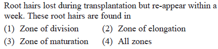 Root hairs lost during transplantation but re-appear within a week. These root hairs are found in (1) Zone of division(2) Zone of elongation (3) Zone of maturation (4) All zones