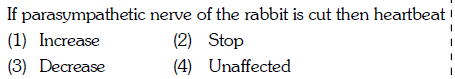 If parasympathetic nerve of the rabbit is cut then heartbeat (1) Increase (3) Decrease (2) Stop (4) Unaffected