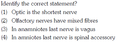 Identify the correct statement? (1) Optic is the shortest nerve (2) Olfactory nerves have mixed fibres (3) In anamniotes last nerve is vagus (4) In amniotes last nerve is spinal accessory