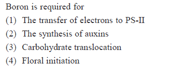 Boron is required for (1) The transfer of electrons to PS-II 2) The synthesis of auxins (3) Carbohydrate translocation (4) Floral initiation