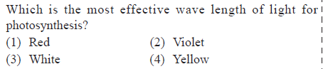 Which is the most effective wave length of lght for photosynthesis? (1) Red (3) White (2) Violet (4) Yellovw