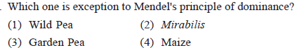 Which one is exception to Mendel's principle of dominance? (1) Wild Pea (3) Garden Pea (2) Mirabilis (4) Maize