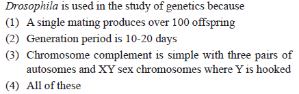 Drosophila is used in the study of genetics because (1) A single mating produces over 100 offspring (2) Generation period is 10-20 days (3) Chromosome complement is simple with three pairs of autosomes and XY sex chromosomes where Y is hooked (4) All of these