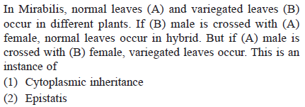 In Mirabilis, normal leaves (A) and variegated leaves (B) occur in different plants. If (B) male is crossed with (A) female, normal leaves occur in hybrid. But if (A) male is crossed with (B) female, variegated leaves occur. This is an instance of (1) Cytoplasmic inheritance (2) Epistatis