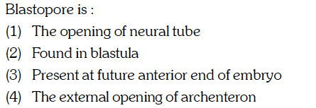 Blastopore is: (1) The opening of neural tube (2) Found in blastula (3) Present at future anterior end of embryo 4) The external opening of archenteron
