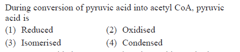 During conversion of pyruvic acid into acetyl CoA, pyruvic acid is (1) Reduced (3) Isomerised (2) Oxidised (4) Condensed