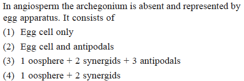 In angiosperm the archegonium is absent and represented by egg apparatus. It consists of (1) Egg cell only (2) Egg cell and antipodals (3) 1 oosphere + 2 synergids + 3 antipodals (4) 1 oosphere 2 synergids
