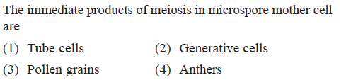 The immediate products of meiosis in microspore mother cell are (1) Tube cells (3) Pollen grains (2) Generative cells (4) Anthers