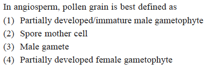 In angiosperm, pollen grain is best defined as (1) Partially developed/immature male gametophyte (2) Spore mother cell (3) Male gamete (4) Partially developed female gametophyte