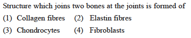 Structure which joins two bones at the joints is formed of (1) Collagen fibres (2 Elastin fibres (B) Chondrocytes (4) Fibroblasts