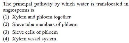 The principal pathway by which water is translocated in angiosperms 1s (1) Xylem and phloem together (2) Sieve tube members of phloem (3) Sieve cells of phloem (4) Xylem vessel system