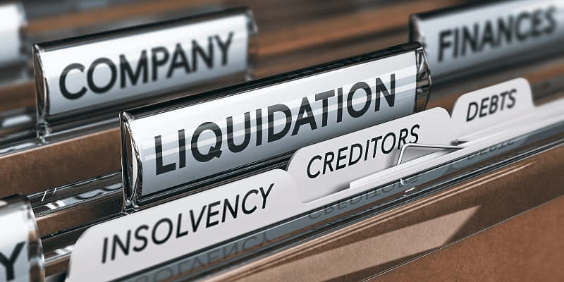 Modes of closing a business - Series I: Summary procedure of liquidation
