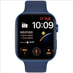 Pebble Verse Smart Watch