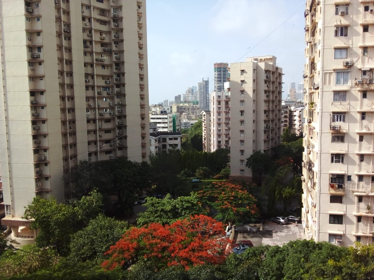 Flat on rent in Anita, Nepeansea Road