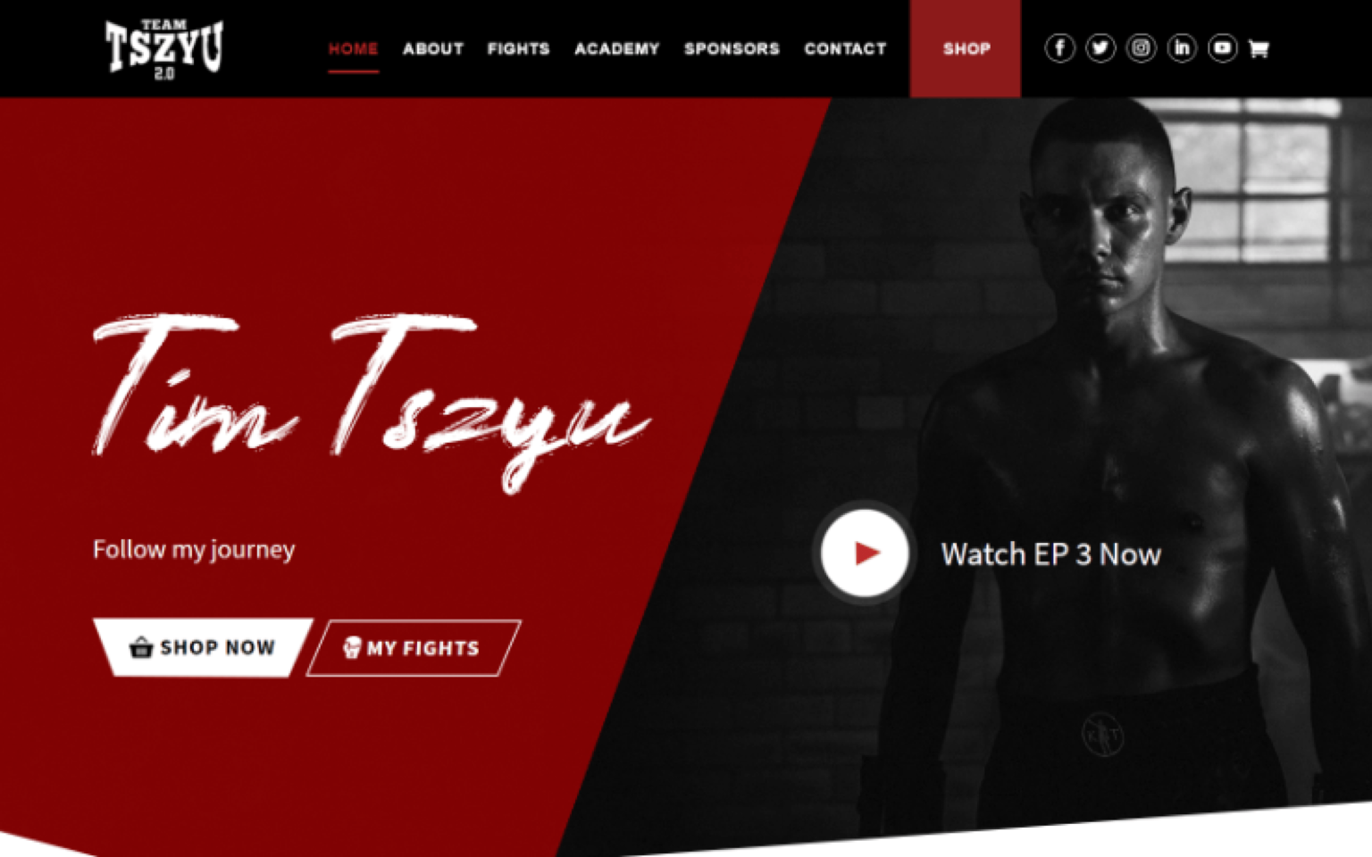 Tim Tszyu intructor portfolio + business website