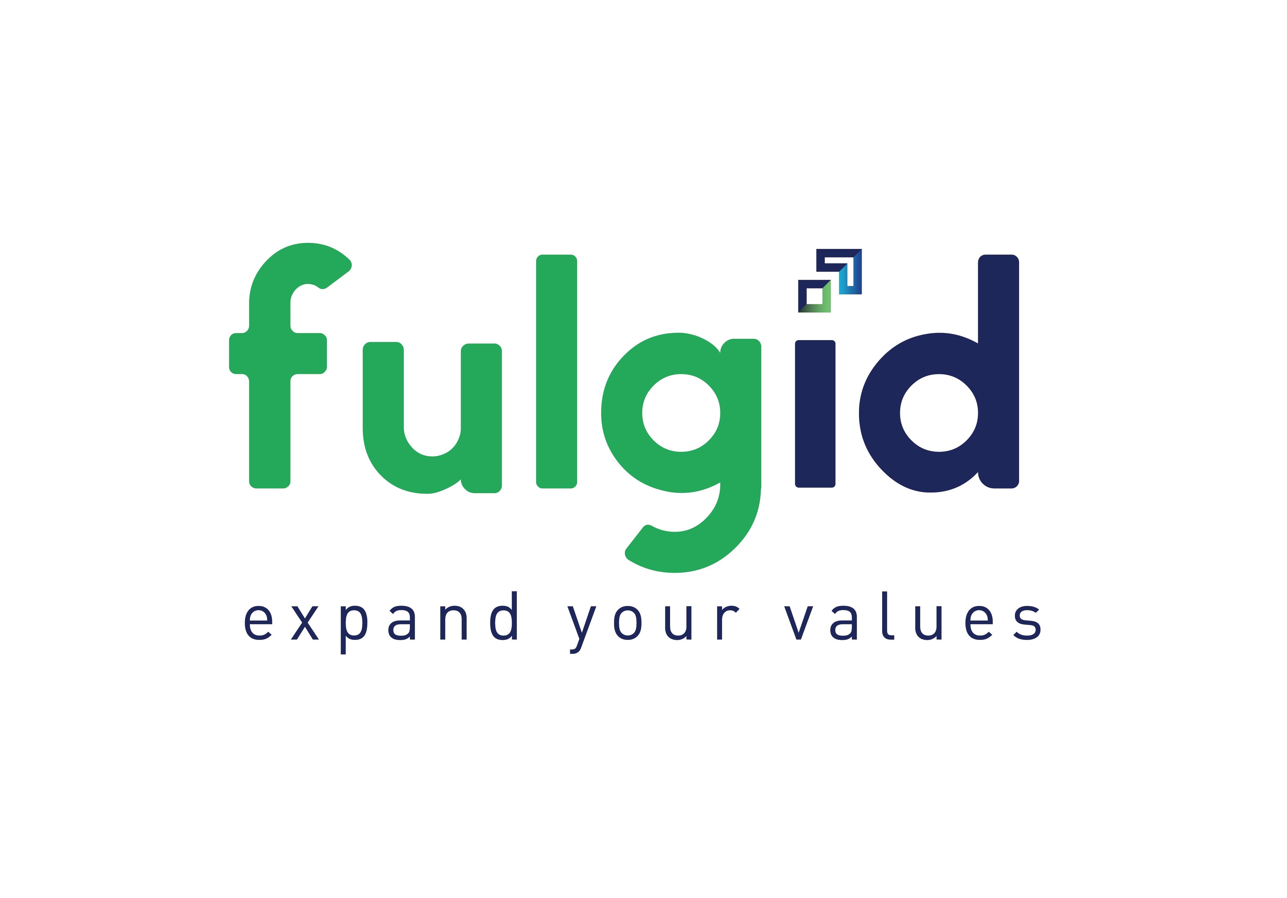 Fulgid Software Solutions Pvt Ltd