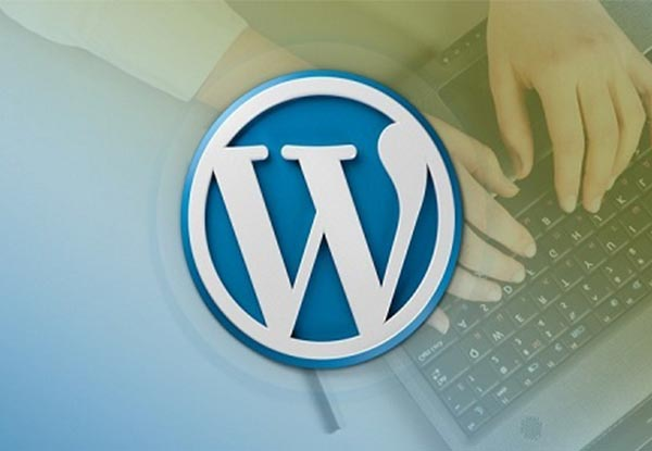 Some Of The Most Ingenious Ways To Conceive Of Data On WordPress Development