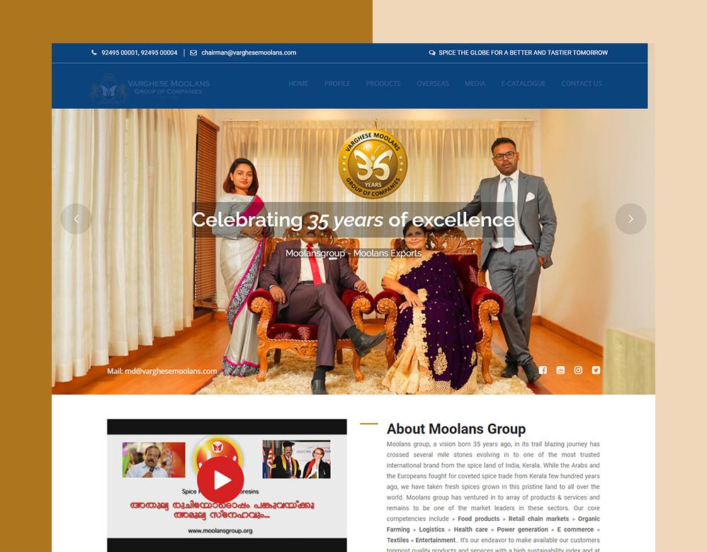 client moolanse portfolio