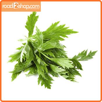 Celery Leaves 1pcs