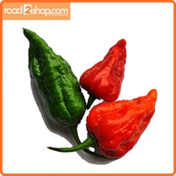 Bombay Chili 5pcs