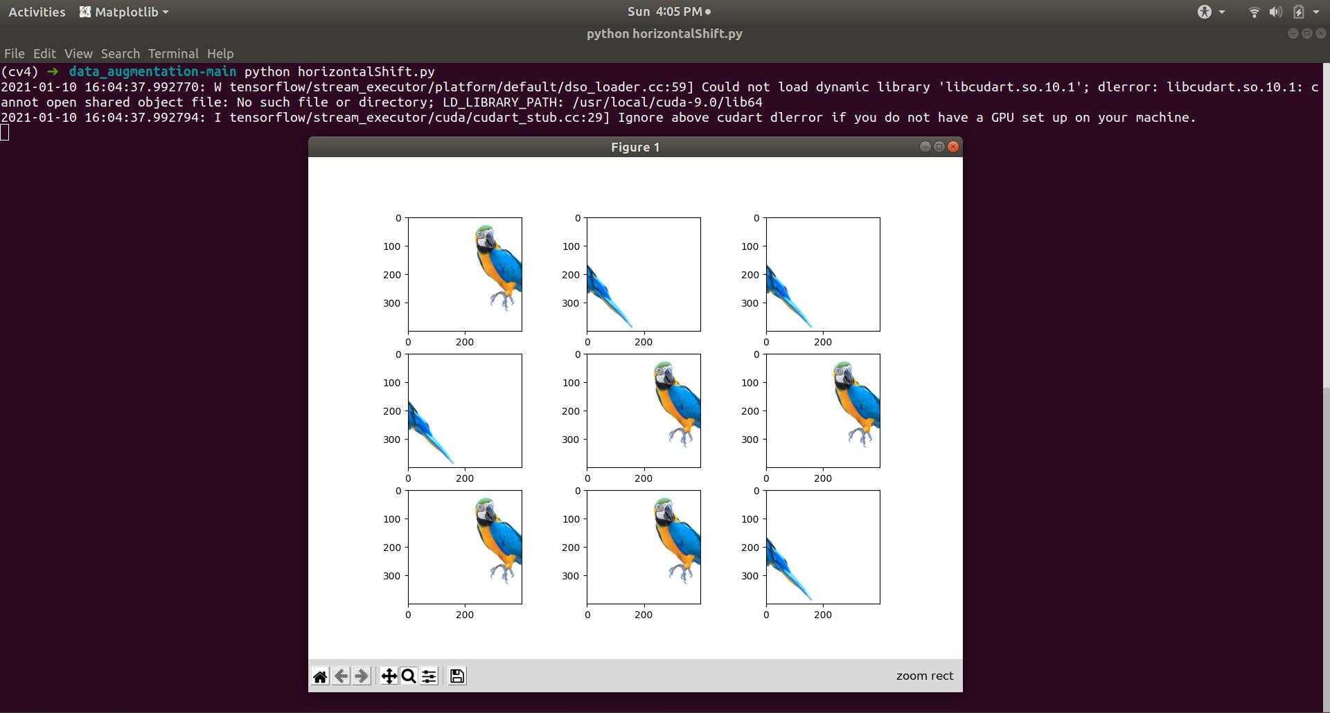 Horizontal Shift Image Augmentation exampl