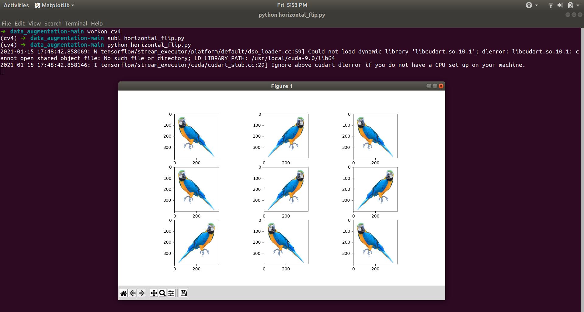 Horizontal Flip Data Augmentation Example