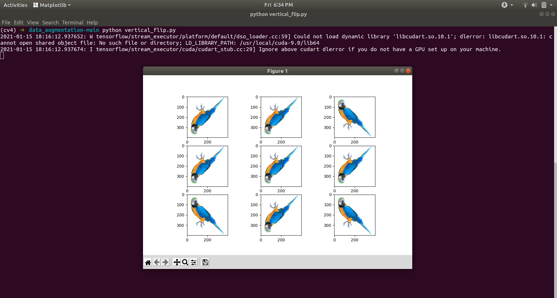 Vertical Flip Data Augmentation example
